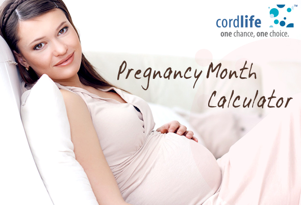 Pregnancy Month Calculator