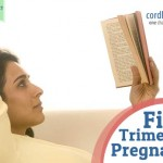 What happens in your First Trimester of Pregnancy?