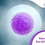 Patients Guide to Stem Cell Treatment