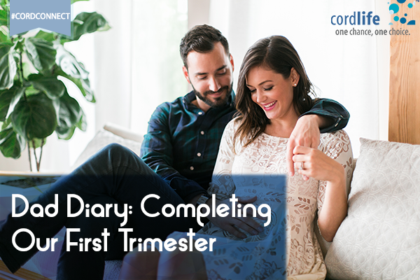 Dad-Diary-Completing-our-first-trimester