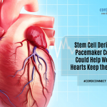 Stem cell derived pacemaker cells could help weak hearts keep the beat