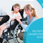 Fixing mutation that causes Muscular Dystrophy