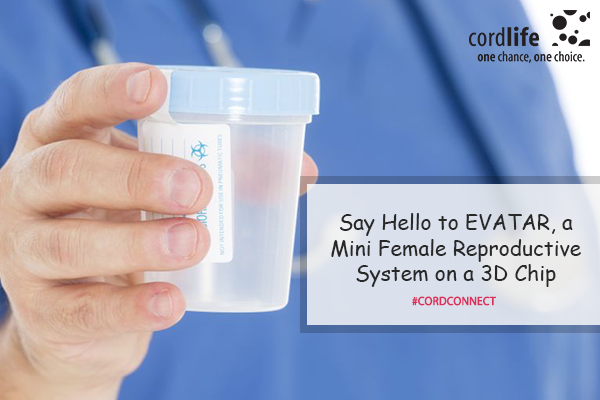 Say-Hello-to-EVATAR,-a-Mini-Female-Reproductive-System-on-a-3D-Chip
