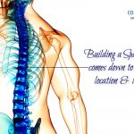 Building a spinal cord comes down to location, location, location