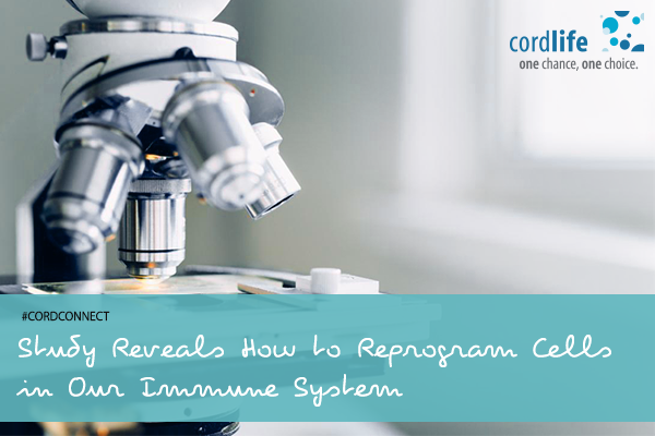Study-Reveals-How-to-Reprogram-Cells-in-Our-Immune-System