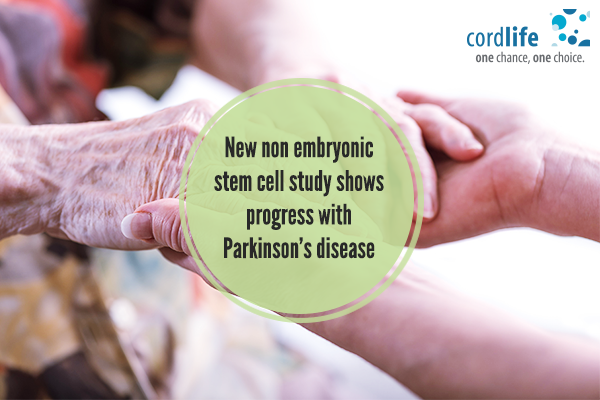 embryonic-stem-cell-study