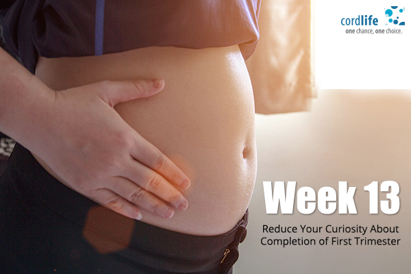 Week-13Reduce-Your-Curiosity-About-Completion-of-First-Trimester