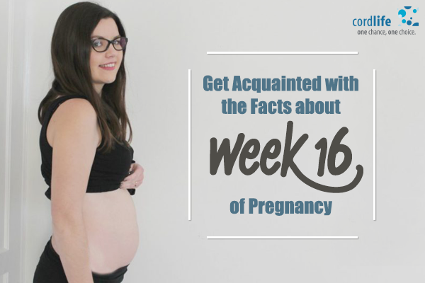 Get-Acquainted-with-the-Facts-about-Week-16-of-Pregnancy