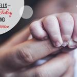 Stem Cells – Saving Today Saving Tomorrow
