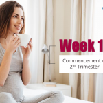 Week 14 – Commencement of Second Trimester
