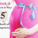Week 18 – You're in Your Fifth Month of Pregnancy