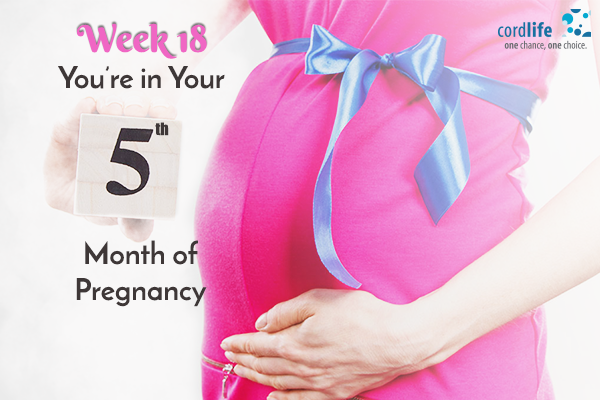 Week-18-–-You're-in-Your-Fifth-Month-of-Pregnancy