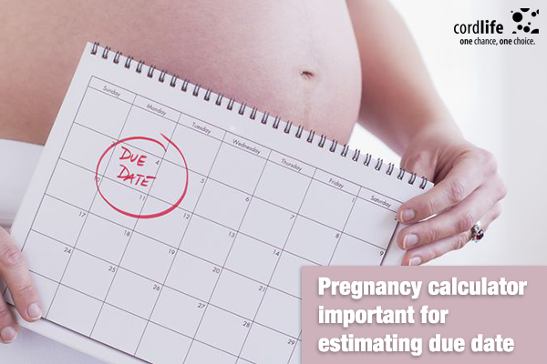 Pregnancy-calculator-important-for-estimating-due-date