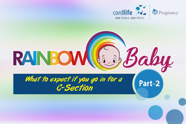 Blog_rainbow baby part 2