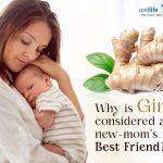 Why Is Ginger Considered a New-mom's Best Friend?