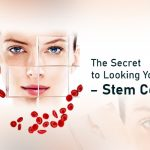 The Secret to Looking Younger – Stem Cells?