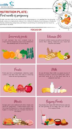 infographics  infographics